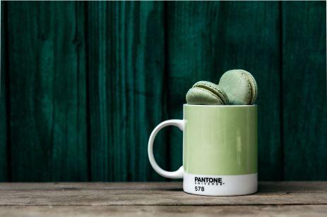kaboompics_Green Macaroons in Pantone mug
